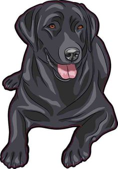 Winston & Bear Dog Stickers - 2 Pack - Cute Black Labrador Retriever Stickers for Wall, Fridge, Toilet and More - Retail Packaged Black Labrador Decals Labrador Retrievers, Black Labrador Retriever, Retriever Puppies, Golden Retrievers, Airedale Terrier, Boston Terrier, Schwarzer Labrador Retriever, Labrador Puppy Training, Dog Vector