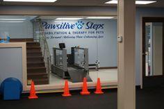 Southeast MI Veterinary Tour   Pawsitive Steps Rehabilitation & Therapy for Pets, Troy MI