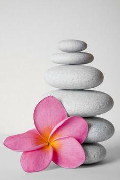 Zen belida2  i love art