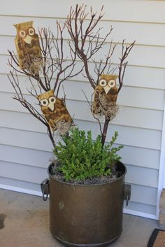 How to Make Wooden Owls Pinned by www.myowlbarn.com
