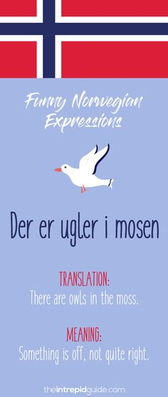 Norwegian Sayings and Idioms - Der er ugler i mosen Learn Turkish Language, Learn A New Language, French Lessons, Spanish Lessons, Spanish Activities, Teaching Spanish, Teaching French, Norwegian Words, Learning Languages Tips