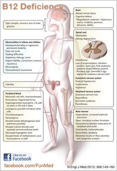 Vitamins and minerals in a paleo diet B12