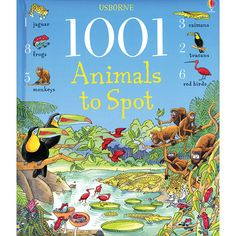 1001 Animals to Spot Hidden Picture Book.  Teeming with animals to find, count and talk about, this bright picture book provides hours of puzzle-solving fun. It also helps develop basic word and number skills the busy scenes bring to life different habitats from around the world. Children will delight in finding all kinds of fmailiar and exotic animals - from lambs on the farm to armadillos in the rainforest.