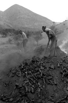 Magnum Photos has visually documented most of the world's major events and personalities since the covering society, politics, events and conflict Old Photos, Vintage Photos, Crete Greece, Old Maps, Magnum Photos, Pompeii, Storytelling, The Past, Black And White