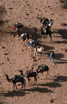 Fotos del viaje a Argelia | Insolit Viajes