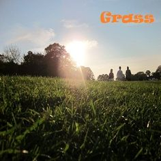 Grass Album Cover