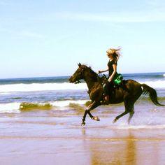 In riding horses we borrow freedom