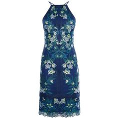 See this and similar Karen Millen dresses - Opt for a bold summer look in this floral lace dress by Karen Millen. Crafted with a blue under layer, the dress is. Short Summer Dresses, Short Lace Dress, Lace Dress With Sleeves, Long Sleeve Midi Dress, Lace Midi Dress, Summer Maxi, Midi Dresses, Bodycon Dress, Blue Cocktail Dress