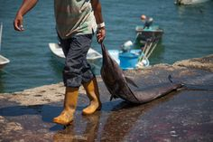 Changing times for Costa Ricas artisanal fisherman: http://www.ticotimes.net/2015/04/02/photo-gallery-a-changing-tide-for-costa-ricas-artisanal-fishing-communities