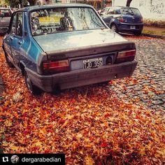 #Repost @dergarabedian with @repostapp.  #renault12 #otoño #autumn #igers #igersbsas #buenosaires #today #sunday #street #cars