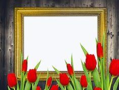 Отправить материалы Frame, Photography, Painting, Design, Home Decor, Art, Picture Frame, Art Background, Photograph