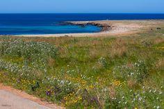 Beach close to San Vito Lo Capo - Photo courtesy of Teodora Mihacsi