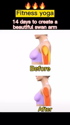 Fitness Workouts, Gym Workout Videos, Gym Workout For Beginners, Fitness Workout For Women, Easy Workouts, Body Weight Leg Workout, Full Body Gym Workout, Back Fat Workout, Weight Loss Workout Plan
