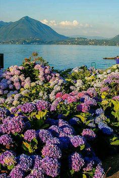 Lago Maggaore Italy