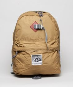 Day Backpack / Mt. Rainer
