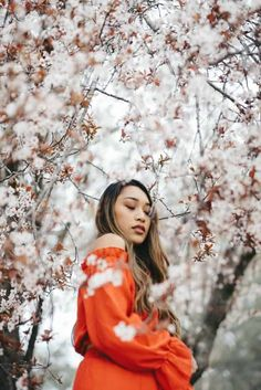 Thanks to Henri Pham for making this photo available freely on 🎁 Tree Photography, Portrait Photography, Lela Rose, Asian Hair Care, Ethnic Hairstyles, Ethical Fashion Brands, Blossom Trees, Cherry Blossoms, Spring Blossom