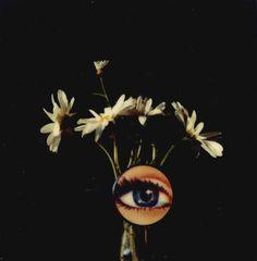 Andre Kertesz polaroid, September 8 1979.