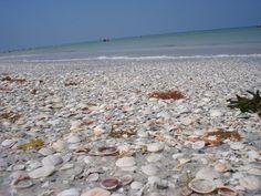 Indian Rocks Beach - Photos of Indian Rocks Beach in Florida