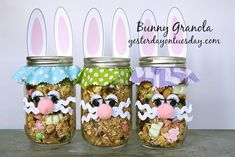 Easter Bunny Granola with craft supplies from Franklin Crafts and Frames Easter Projects, Easter Crafts For Kids, Easter Gift, Easter Treats, Easter Party, Easter Decor, Easter Bunny, Easter Eggs, Mason Jar Art