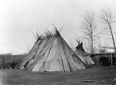 Nez Perce Chief Joseph's tepee, Colville Indian Reservation, Washington, ca. 1901.
