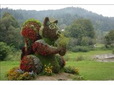 Topiary Garden - 40 Pics   Curious, Funny Photos / Pictures