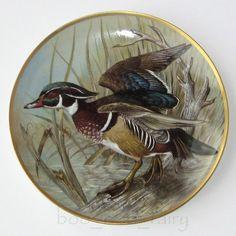 Wood Duck Game Fowl, Wildlife Paintings, Porcelain Ceramics, Bird Art, Pet Birds, Cute Pictures, Sculpture, Antiques, Prints