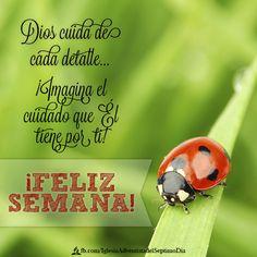 Dios cuida de ti  #FelizSemana
