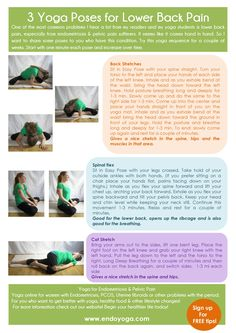 3 Yoga pose for lower back pain http://www.endoyoga.com/1/post/2014/01/three-poses-for-lower-back-pain.html Yoga for endometriosis & pelvic pain