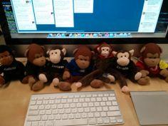 Xamarin monkeys cheering people on at work. Photo by Craig Dunn, https://twitter.com/conceptdev