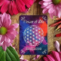 Shop includes over 400 sacred tools: resins, Hindu God & Goddess Statues, crystals, incense, and is home to the Seeds of Shakti Oracle deck. Temple Of Osiris, Flower Of Life Symbol, Secrets Of The Universe, Oracle Cards, Sacred Geometry, Beautiful Patterns, Pagan, Circles, Oracle Deck