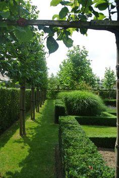 Tuin afgeschermd met leibomen