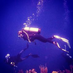 Favorit outfit of all times  #scubadiving #scubadivingadventures #divingtrip #greatday #greatbarrierreef #greatbarrierreefqld #queensland #discoverqueensland #australia #ausfeels #happytobehere #incredibleblue #intotheblue #underwaterworld #underwaterphotography #underwater #divingtrip #wildlife #backpackingaustralia #backpackingiseasy #backpackingisfun #travelgram #youngwildandfree #insideperspective #gopro by greetingsfromheidelberg http://ift.tt/1UokkV2