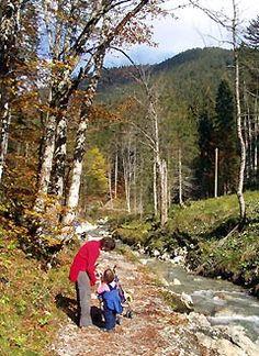 Immer entlang des Baches geht es zur Schwarzentennalm. Seen, Abs, Country Roads, Road Trip Destinations, Tours, Mountains, Hiking, Destinations, Crunches
