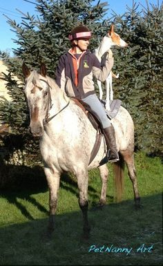 Flute the Ibizan Hound and I on his favourite mare Ella the Andaloosa