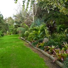 sub tropical garden design nz Google Search Garden design