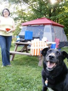 10 Essential Tips For Camping With Your Dog
