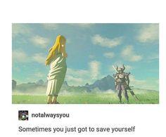 Legend Of Zelda Memes, Legend Of Zelda Breath, Video Games Funny, Funny Games, Skyrim Game, Link Meme, Skyward Sword, Twilight Princess, Breath Of The Wild