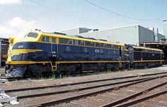 b74 Victorian Bulldog, Australian Bulldog, Diesel Locomotive, Dog Breeds, Melbourne, Transportation, The Past, Around The Worlds, Journey
