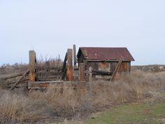 Abandoned farm near Hermiston Oregon.