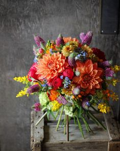 Burst of colors Summer Flowers, Fresh Flowers, Colorful Flowers, Beautiful Flowers, Exotic Flowers, Purple Flowers, Wedding Bouquets, Wedding Flowers, Floral Bouquets