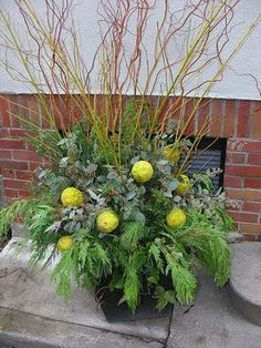 Winter Containers......Ideas for DIY... Leyland Cedar, silver dollar eucalyptus, seeded eucalyptus, long needled pine, yellow twigged dogwood blended with orange toned curly willow and faux osage oranges