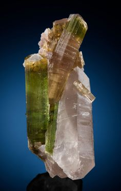 TOURMALINE & SMOKY QUARTZ Nangimali, Neelum Valley, Muzaffarabad District, Azad Kashmir, Pakistan  Combination Tourmaline and Quartz specimen showing four main Tourmaline crystals and several secondary ones. One crystal is grass green over the entire length, while the other three major crystals have peach colored interior sections with grass green terminations. The Tourmalines are partially enclosed in a single, light Smoky Quartz crystal with good form and a satiny luster. A small amount of…