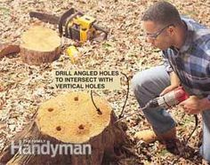 Remove tree stumps without breaking your back! This method is safe and effective, and doesn't require a lot of manual labor.