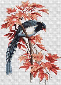 Bird Cross Stitch Kit By Luca S