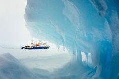 Stuck in Antarctica | Reuters.com