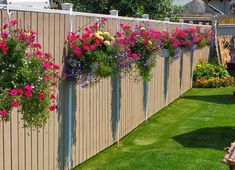 I need to remember this one... these hanging baskets between the bushes along my back wall