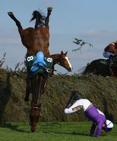 Scary fail, but they say both horse and rider were okay after this fall. Funny Horse Pictures, Funny Horses, Funny Animals, Cross Country Jumps, Stop Animal Cruelty, Racehorse, Show Jumping, Horseback Riding, Horse Racing