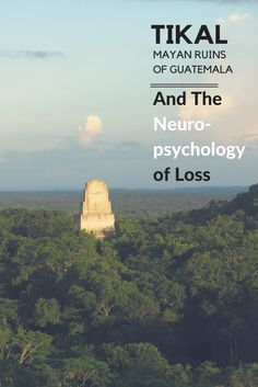 """The Neuropsychology of Loss"". An article on the brain and loss inspired by the abandonment of Tikal. Tikal, Mayan Ruins, Neuroscience, Central America, Thought Provoking, Psychology, Reflection, Brain, Posts"