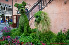 Lady and the Tramp Topiary   by aerog-pix, via Flickr    Topiary display at the Italy Pavilion   Epcot-Disney World, Florida USA  © 2012 Scott Keating