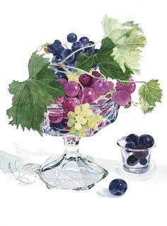 柘植彩子 水彩画 蜂と葡萄